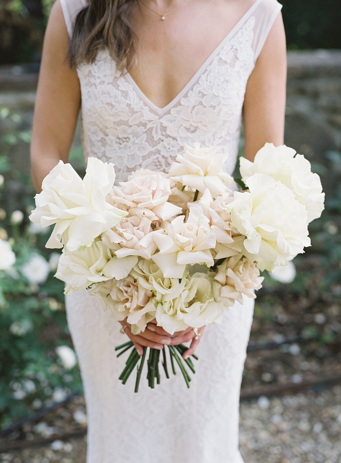 White-Blush-Garden-Rose-Bouquet-Williamsburg-Photo-Studios
