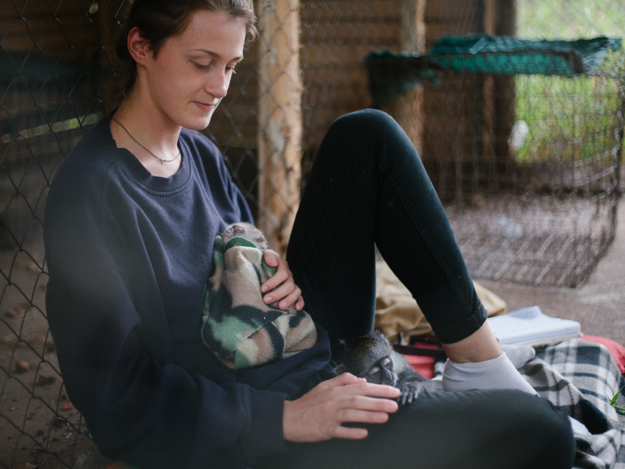 Lauren acts as a bed for a napping vervet and baby samango.