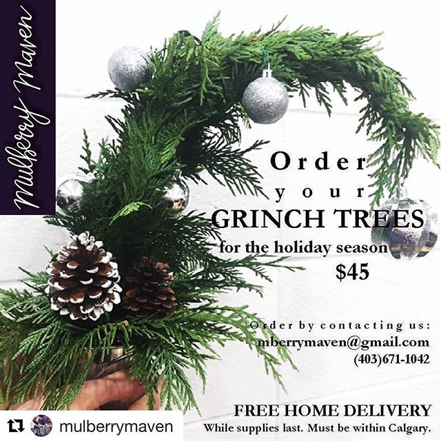 Our friends @mulberrymaven have the cutest grinch trees for the holiday season 🎄💕Get yours before they're gone! ・・・ Guess what YYC?! We've decided to offer FREE home deliveries with all grinch tree orders! While supplies last 😊🙌🏼 Contact us for details.
