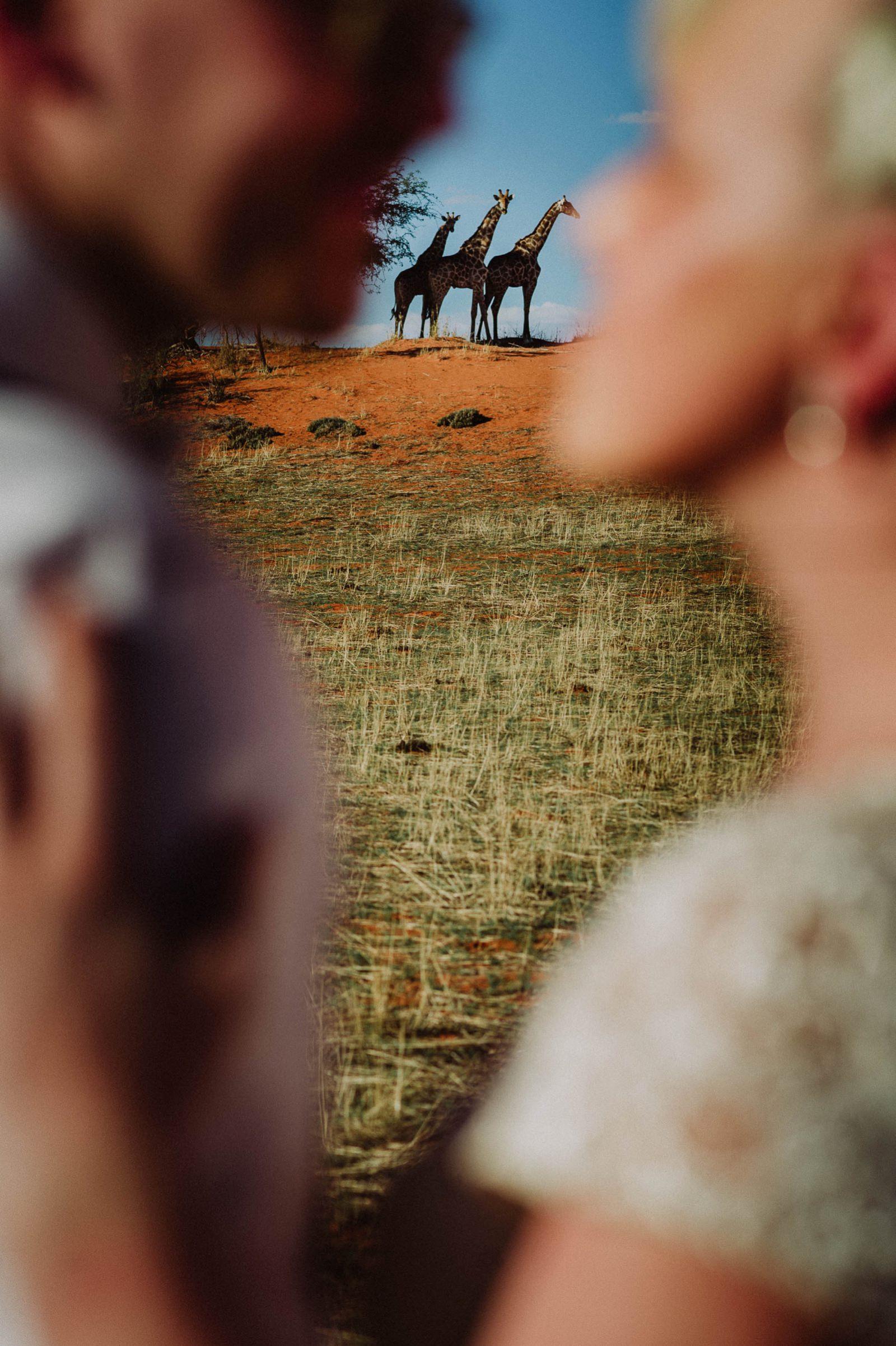 heiraten-in-namibia-7657.jpg
