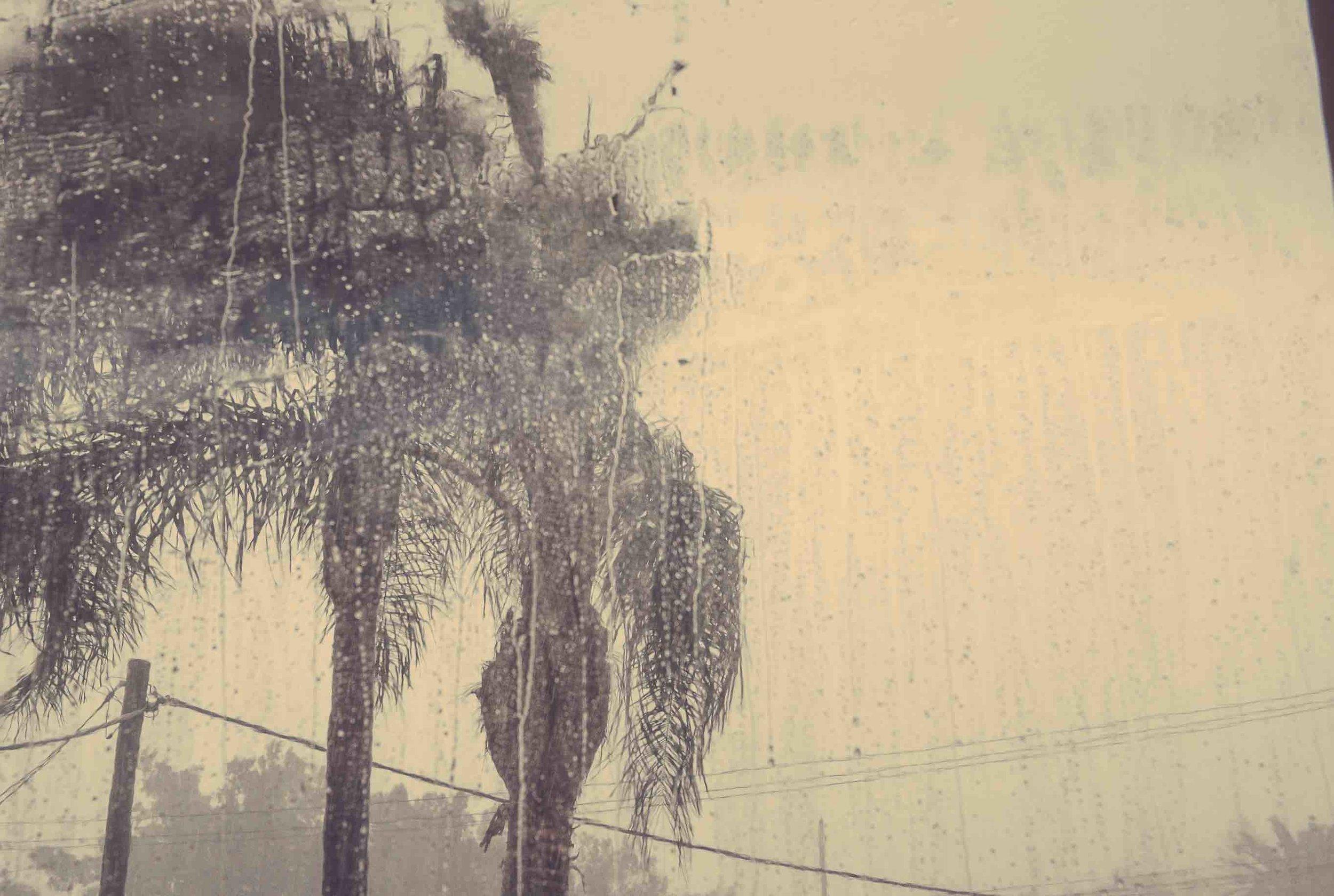 Palm_Beach_Wedding_Storm.jpg