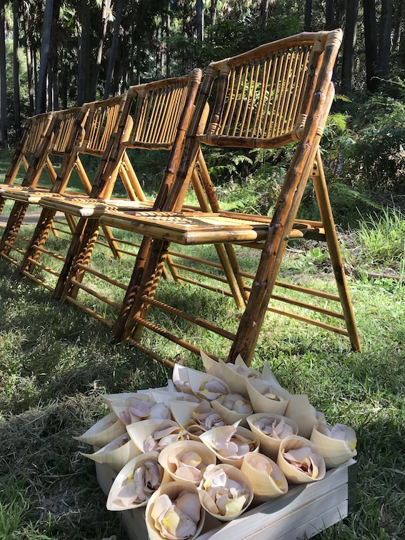 Bamboo_Chairs_Petal_Cones_Wedding_Ceremony.jpg