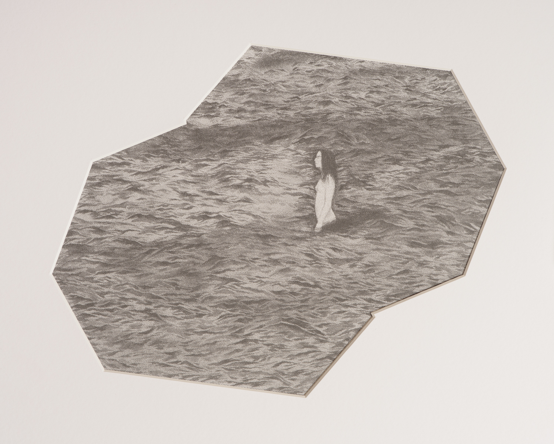 Untitled   Screen print on paper  48 x 53 cm  2016