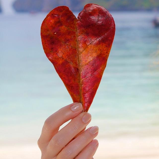 Heart-of-love.jpg