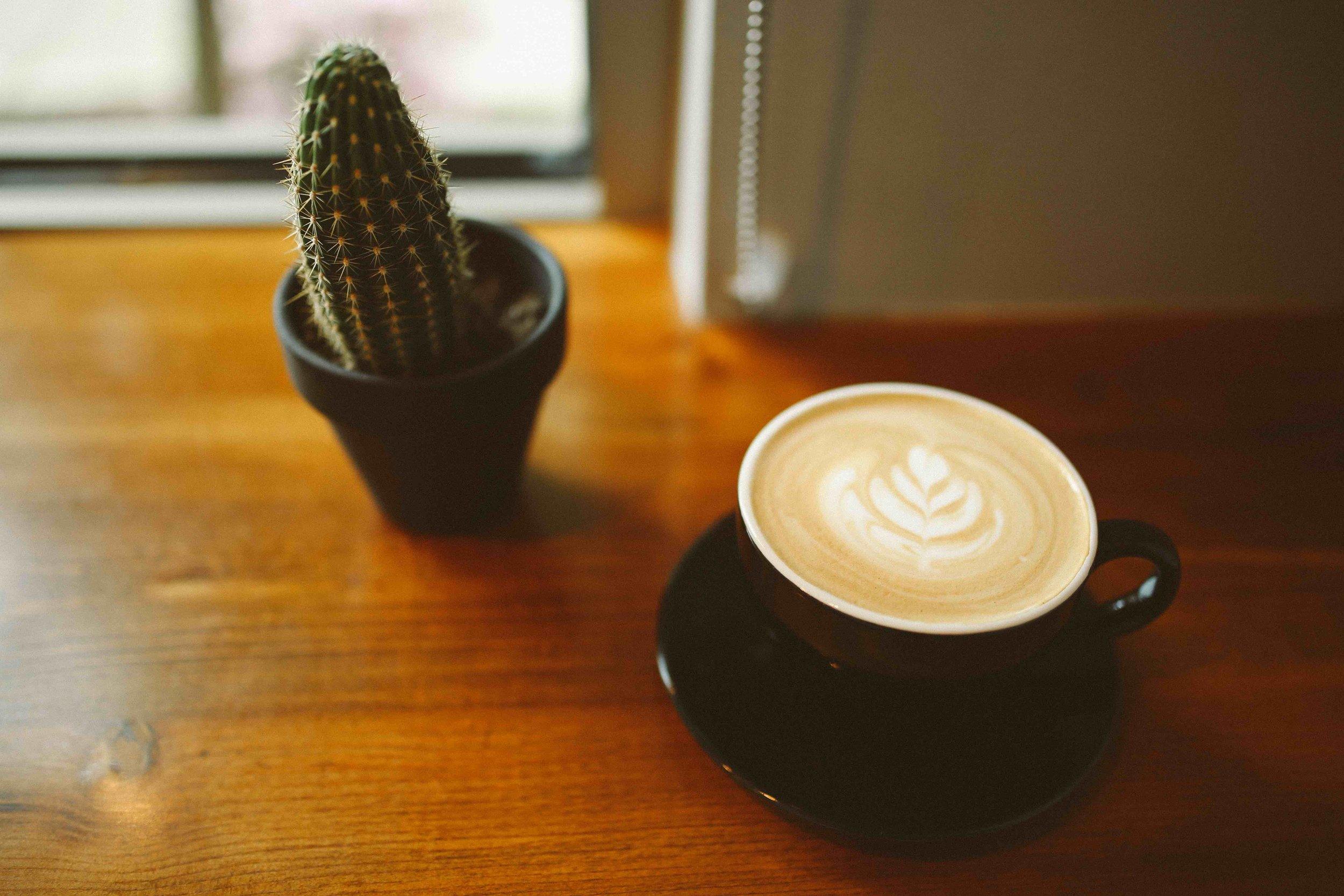 Coffee & Cactus