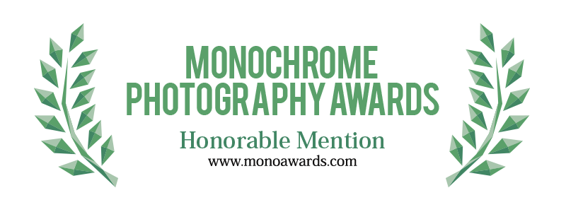 Gratitude and thanks to the Monochrome Awards for my image 'Dark Sight'.
