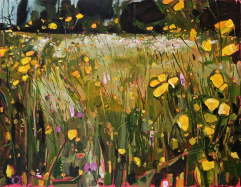 Buttercup meadow - large