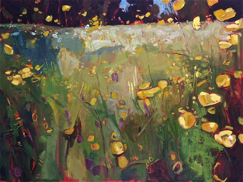 Buttercup Meadow with Sorrel