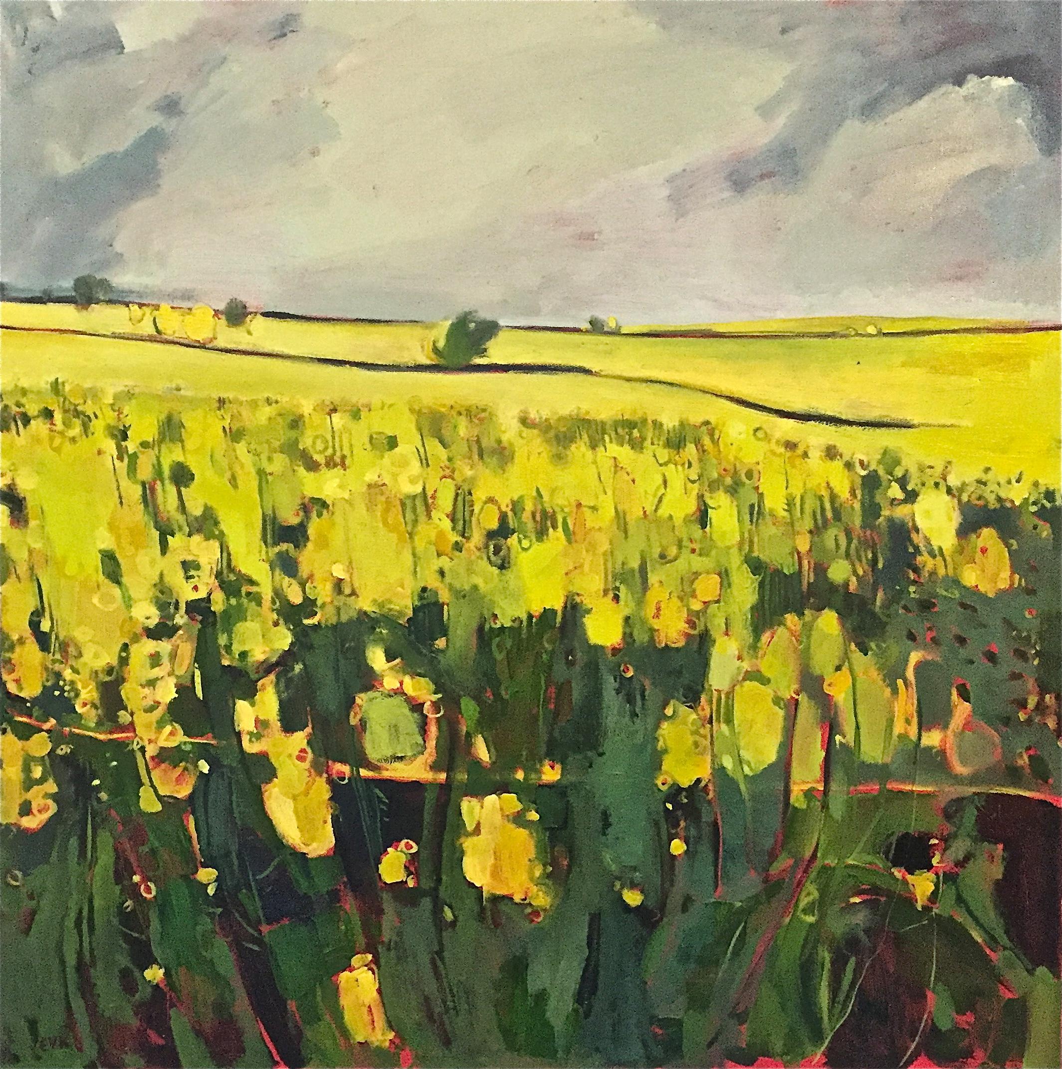 Grey Sky, Yellow Field