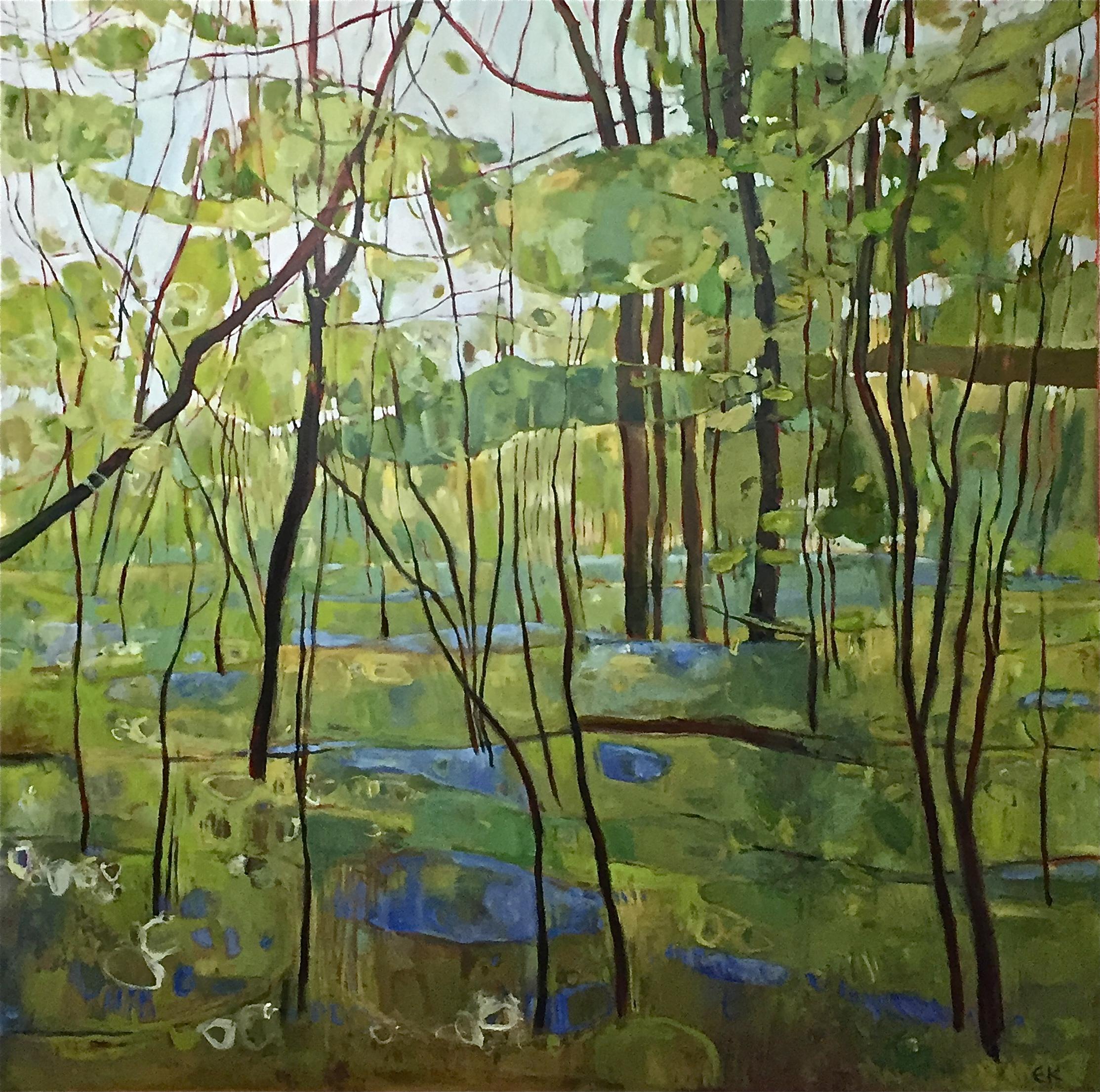 Bluebells in Ploughman Wood