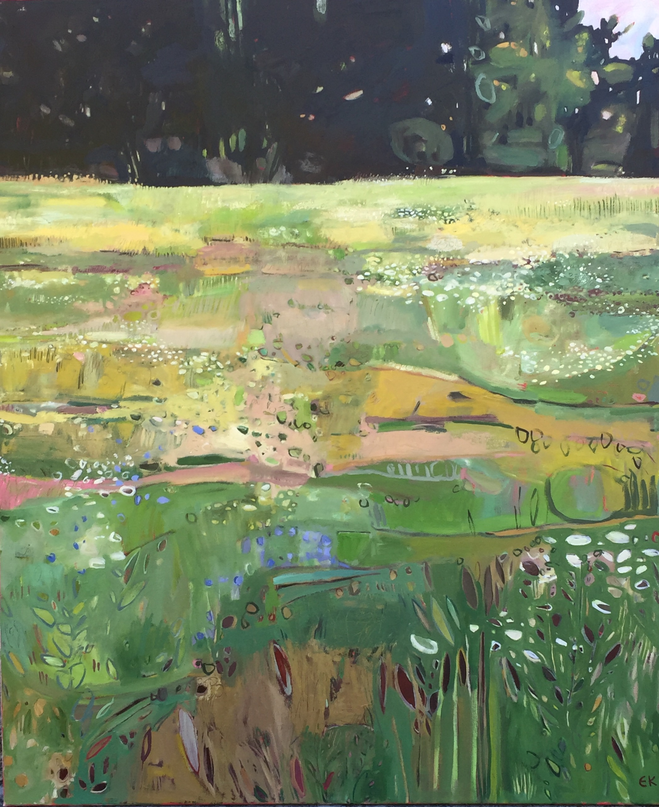 Tuscany Meadow at Sestino