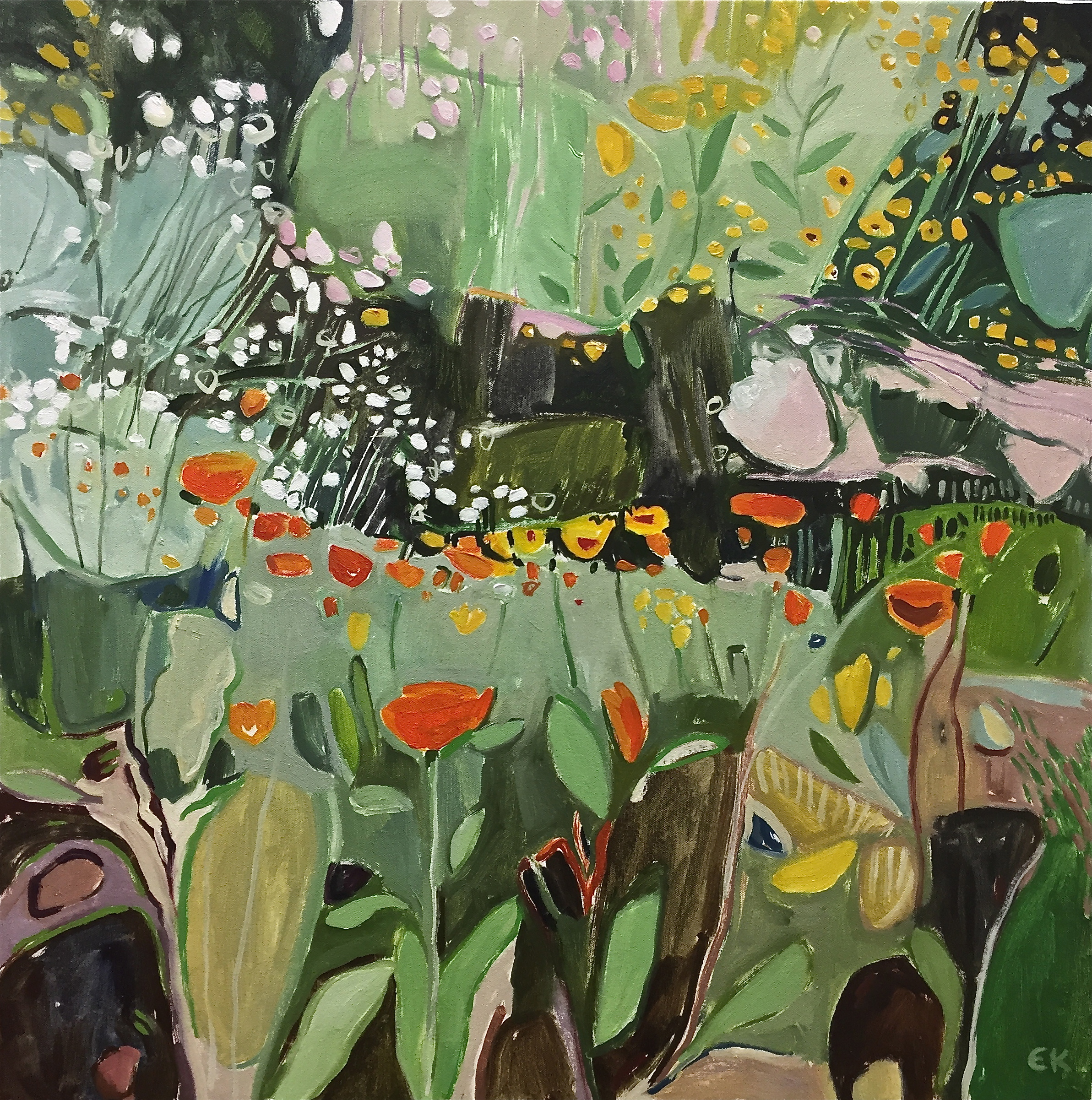 Marigolds and Ox-Eye Dasies, Oxford Botanic Gardens
