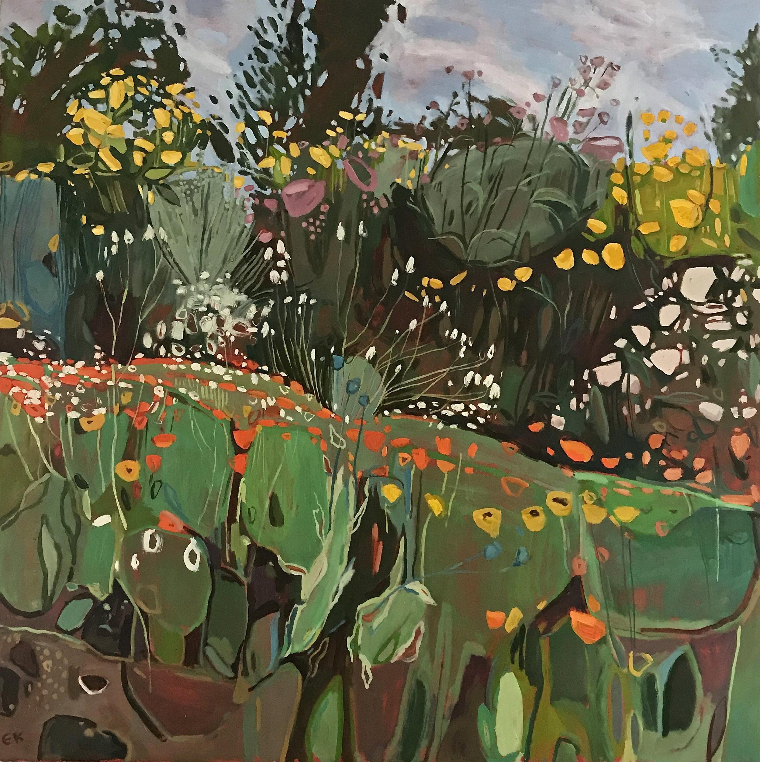 Big Marigolds, Oxford Botanic Gardens