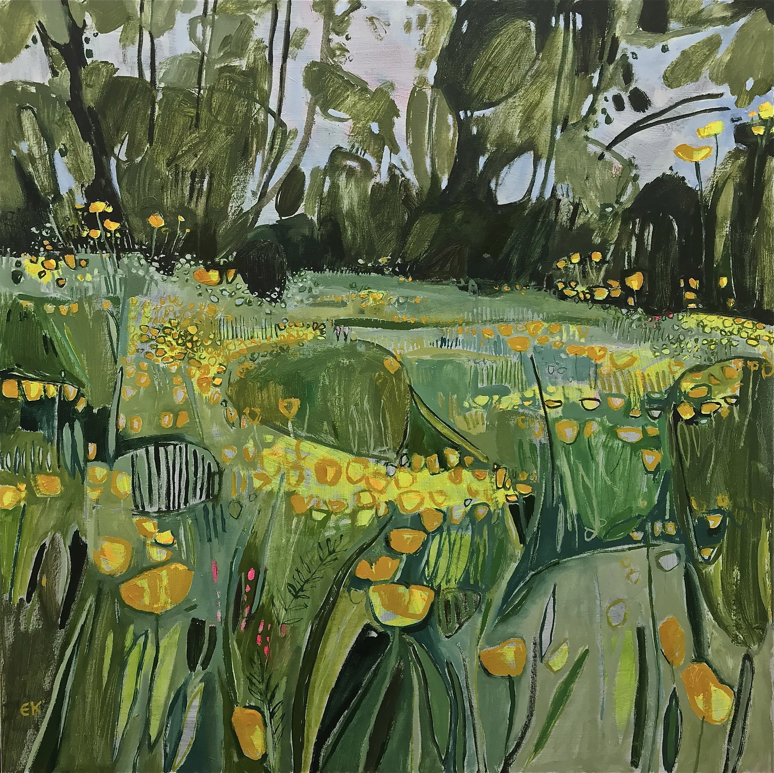 A Good Year for Buttercups