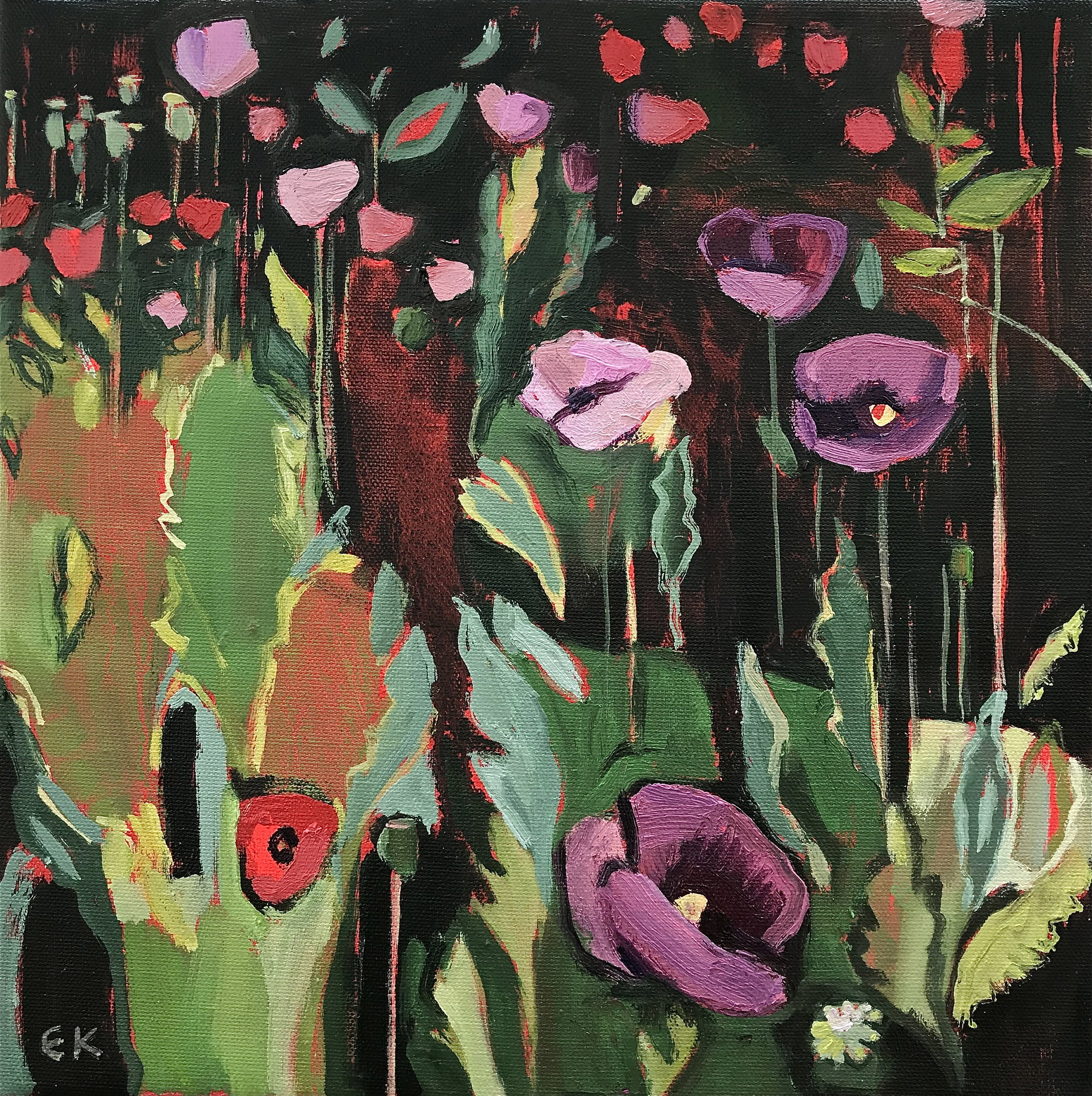 Diptych: Opium Poppies in the Oxford Botanic Gardens - left panel