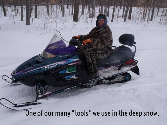sally on sled.jpg