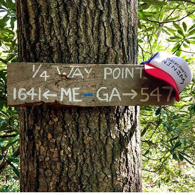 @fearlesssarah hit the 1/4 mark in just under a month, pretty dope! Follow her Appalachian Trail adventure and you won't be disappointed! Happy Trails Sarah