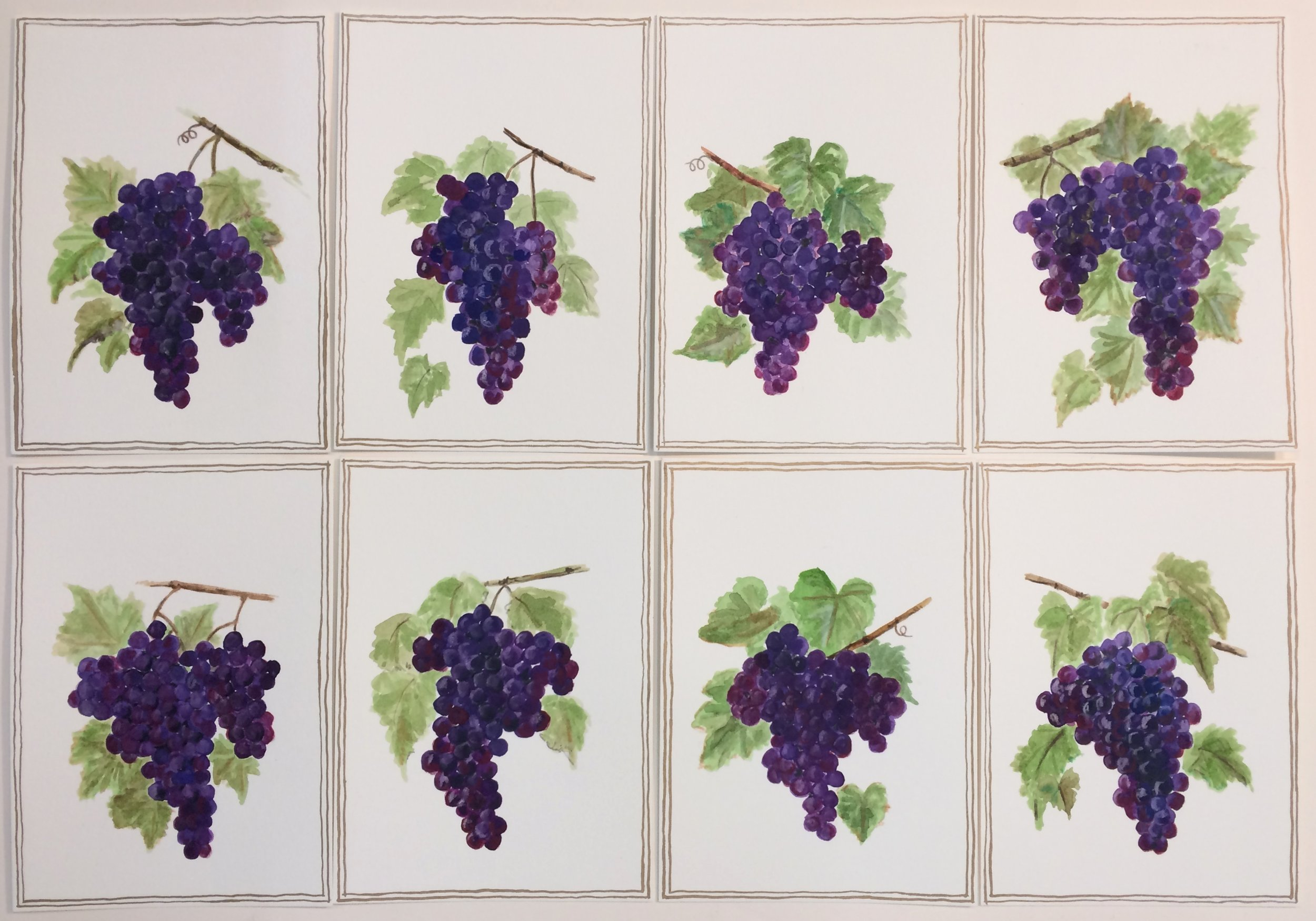 Grapes phone pic.jpg
