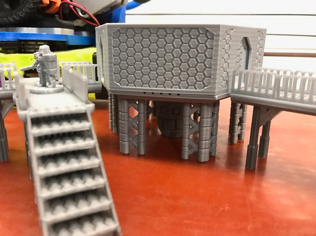 Hexagonal Platforms  , printed by  Kirby