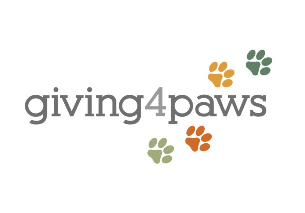 giving4paws cat town site.png