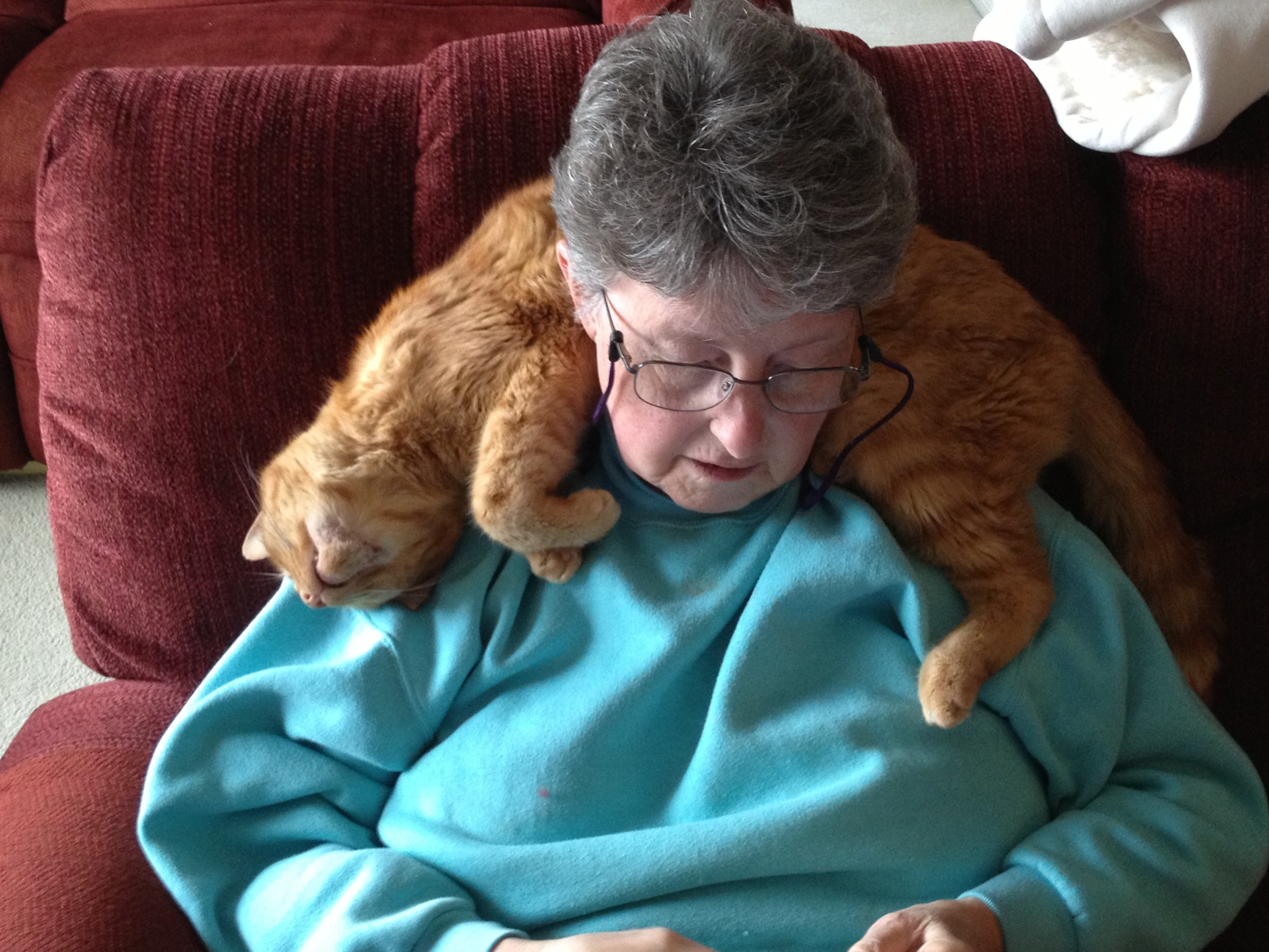 Michaela and Linda have fostered a number of Cat Town cats, including Tyge, pictured here on Linda's shoulders.