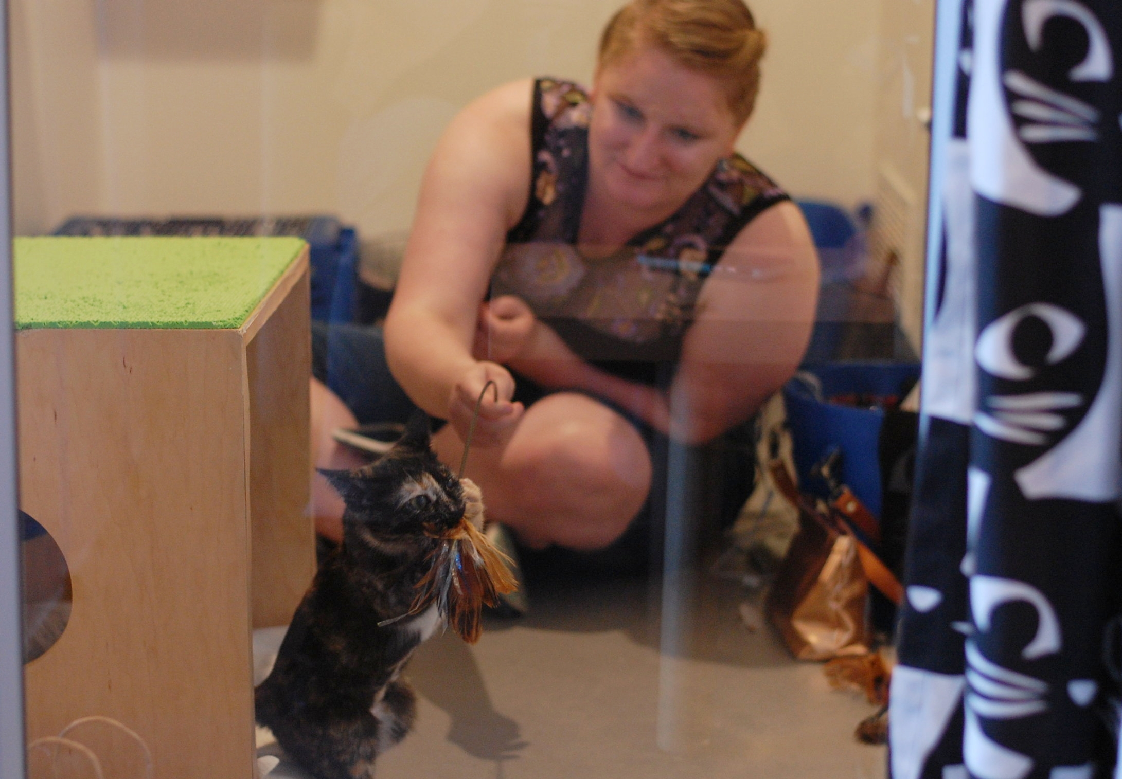 Rachel uses play to help our Forgotten Kittens build confidence. Photo by Cathy Niland.