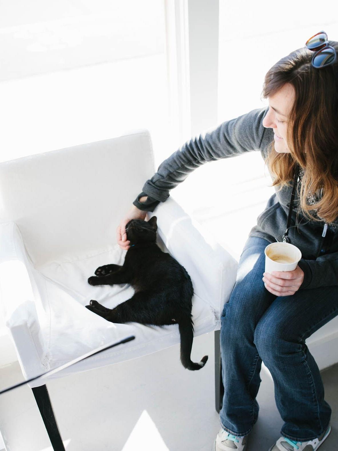 COFFEE+CAT.jpg