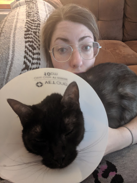 No mere cone can stop Staci and Katya from cuddling together. And with help from her foster mom, Katya's hair is now growing back!