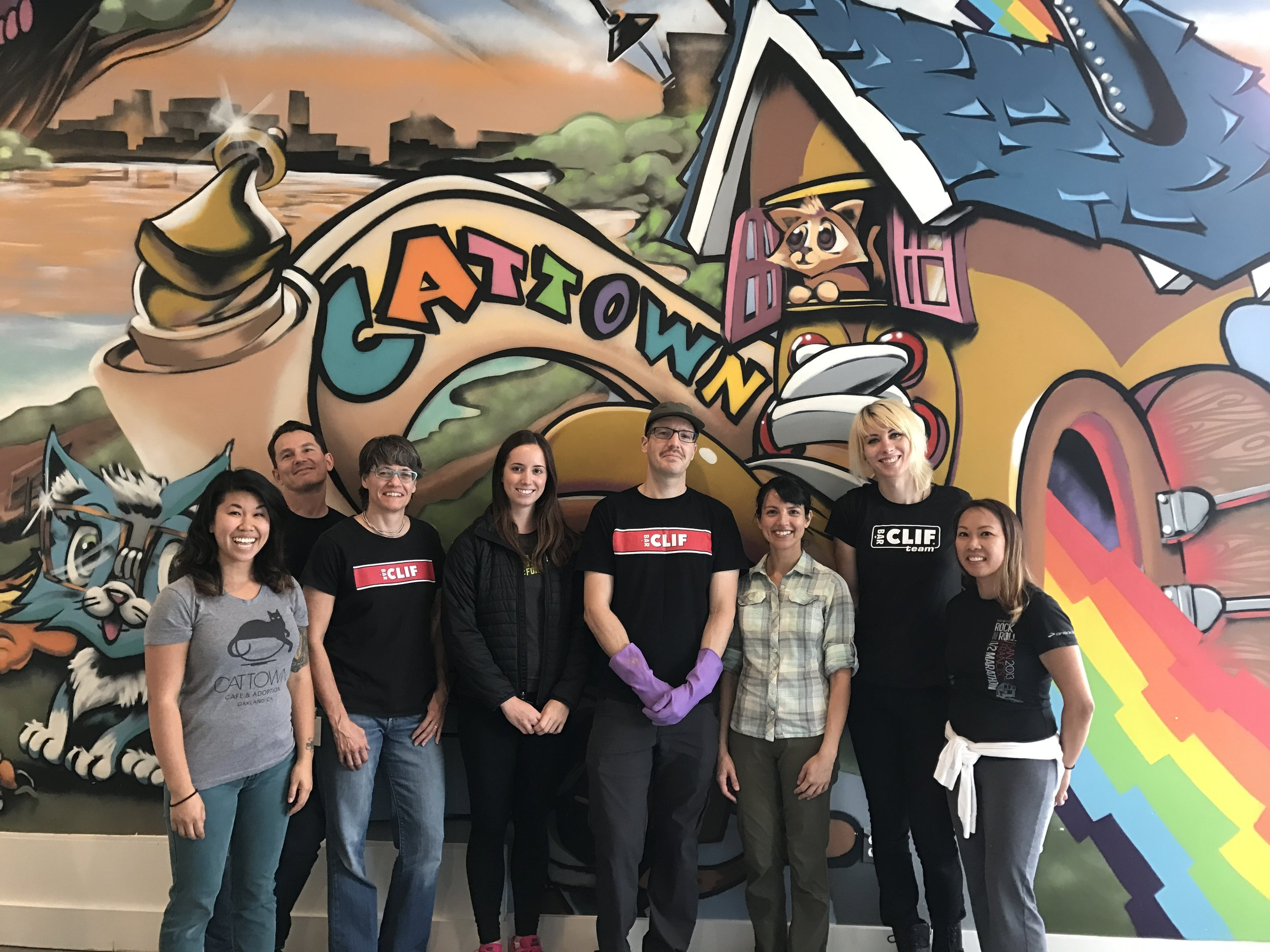 Clif Bar employees have also helped deep clean our Adoption Center to keep our cats healthy. From left to right: Monica, Erik, Sharon, Linden, Nick, Samira, Chris, and Jocelyn.