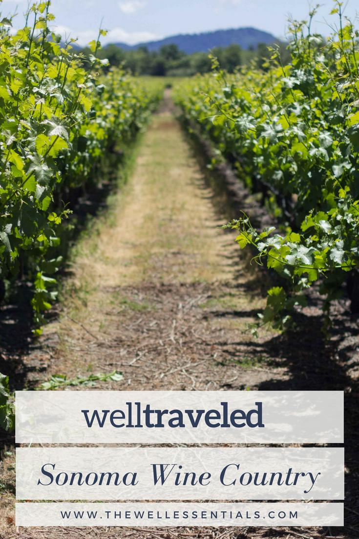 exploring wine country sonoma