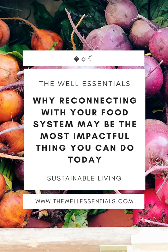 Why Reconnecting With Your Food System May Be The Most Impactful Thing You Can Do Today - The Well Essentials