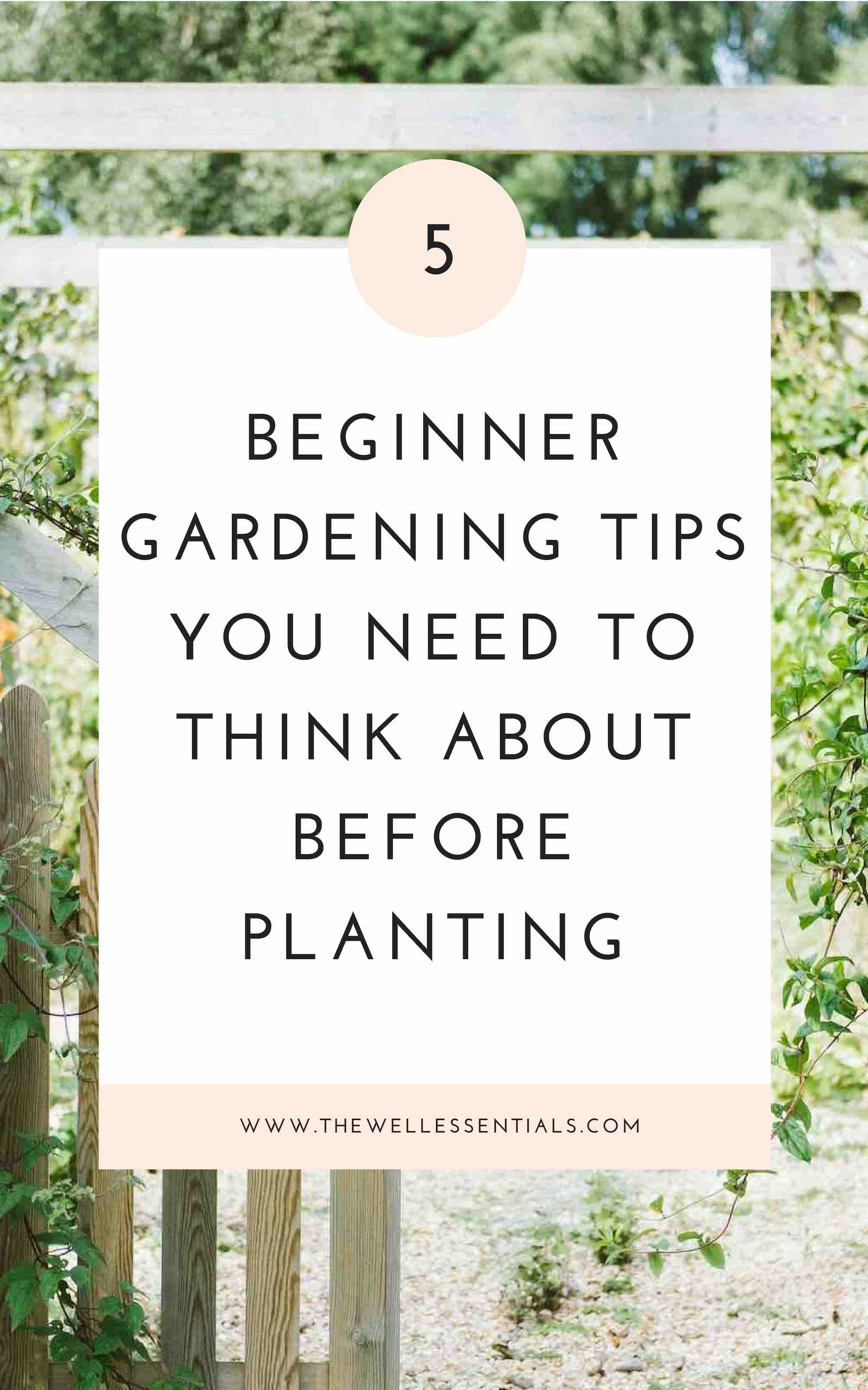 5 Beginner Gardening Tips You Need To Know About Before You Start Planting