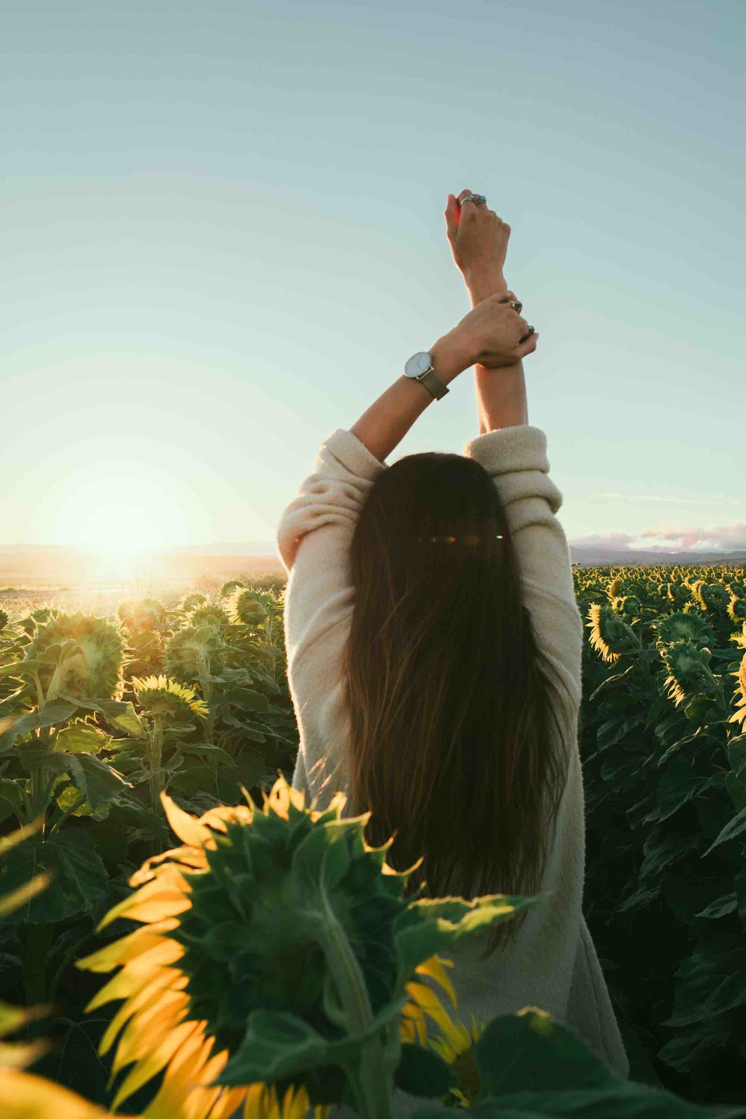 5 Aspects Of Holistic Health And Why They Are So Important