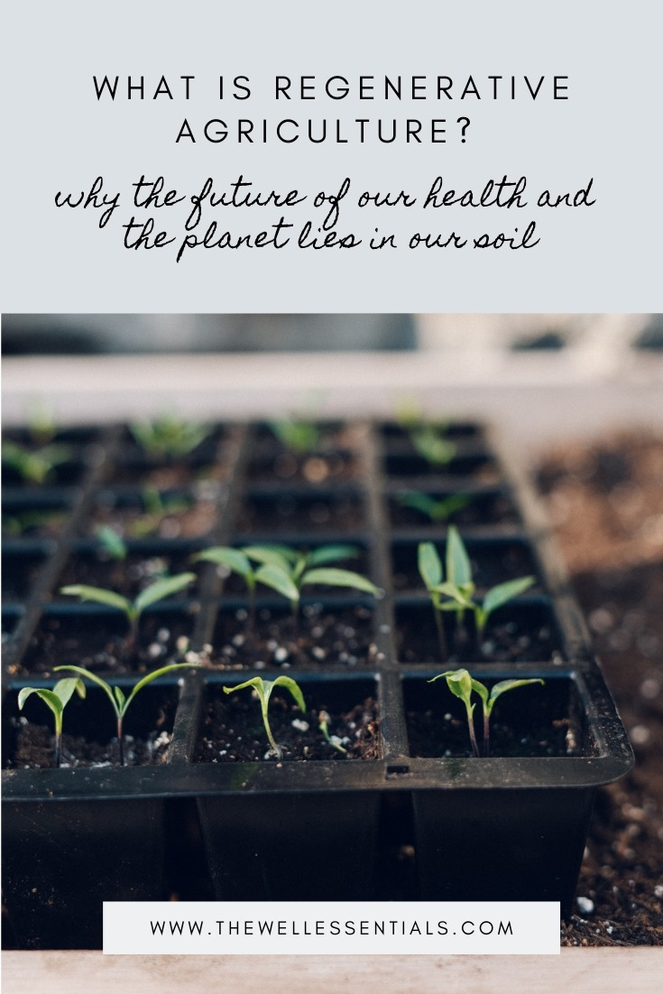 What Is Regenerative Agriculture? Why The Future of Our Health And Our Planet Lies In Our Soil