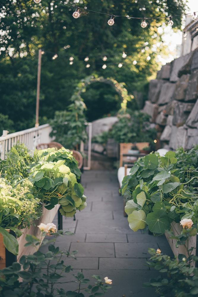 5 Simple Garden Ideas For Designing Your Small Space Garden