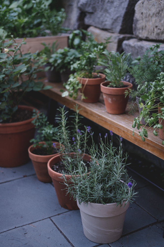 How To Plan A Raised Bed Garden Design For Small Gardens