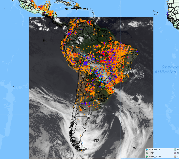 To view an interactive map of the current state of rainforest and forest fires globally  click here