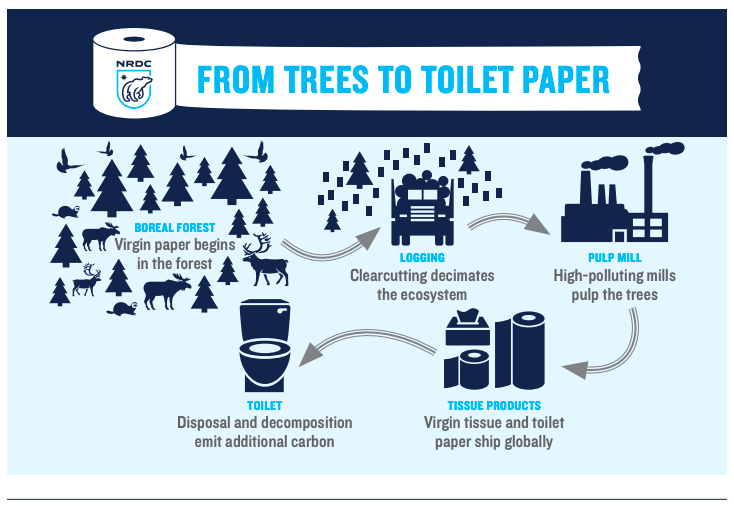 """Source:  NRDC """"The Issue With Tissue"""" Report"""