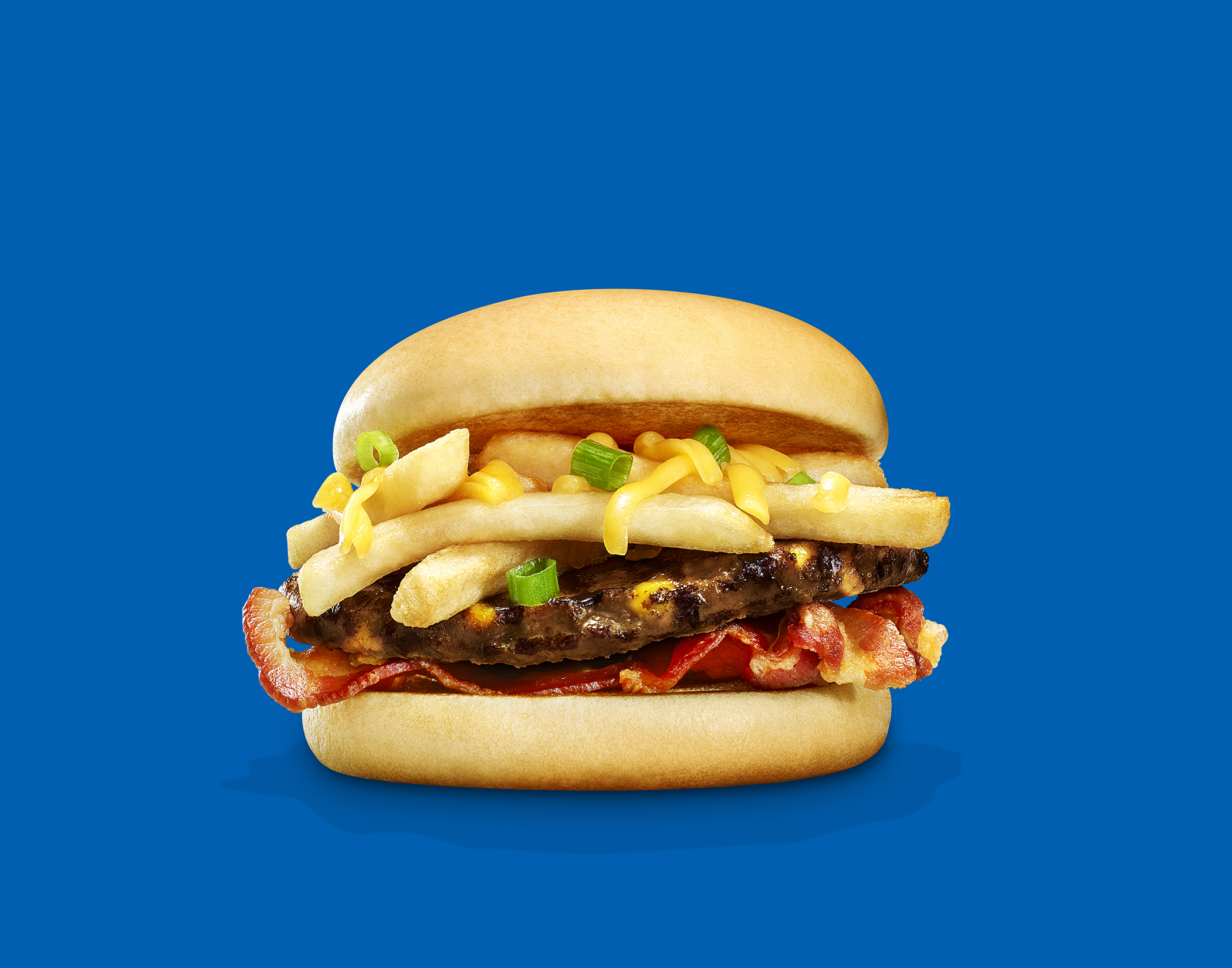 1803_Ball_Park_Hamburger_Double_Cheddar_Fry_Helicon_preview_R2.jpg