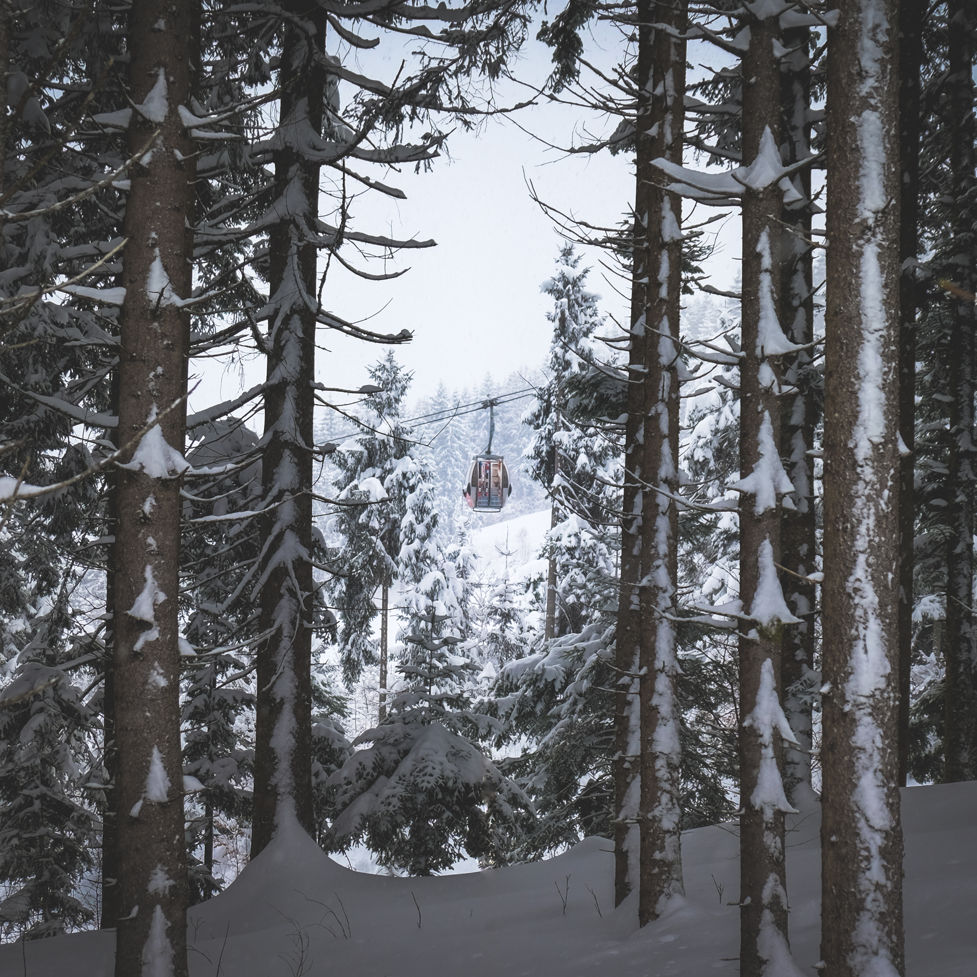 ski life as seen through the forest in Kitzbühel, Austria