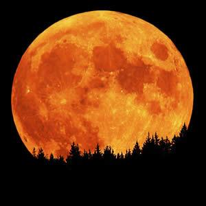 Super-Harvest-Moon