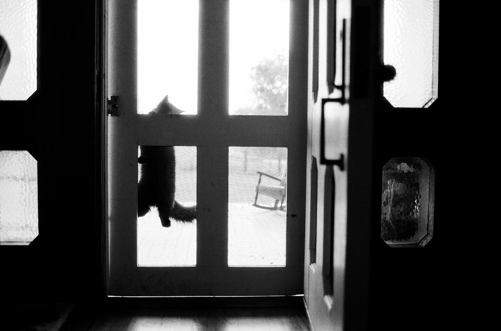 Mae Burke Motherhood Photographer Everyday Moments on Film-14.JPG