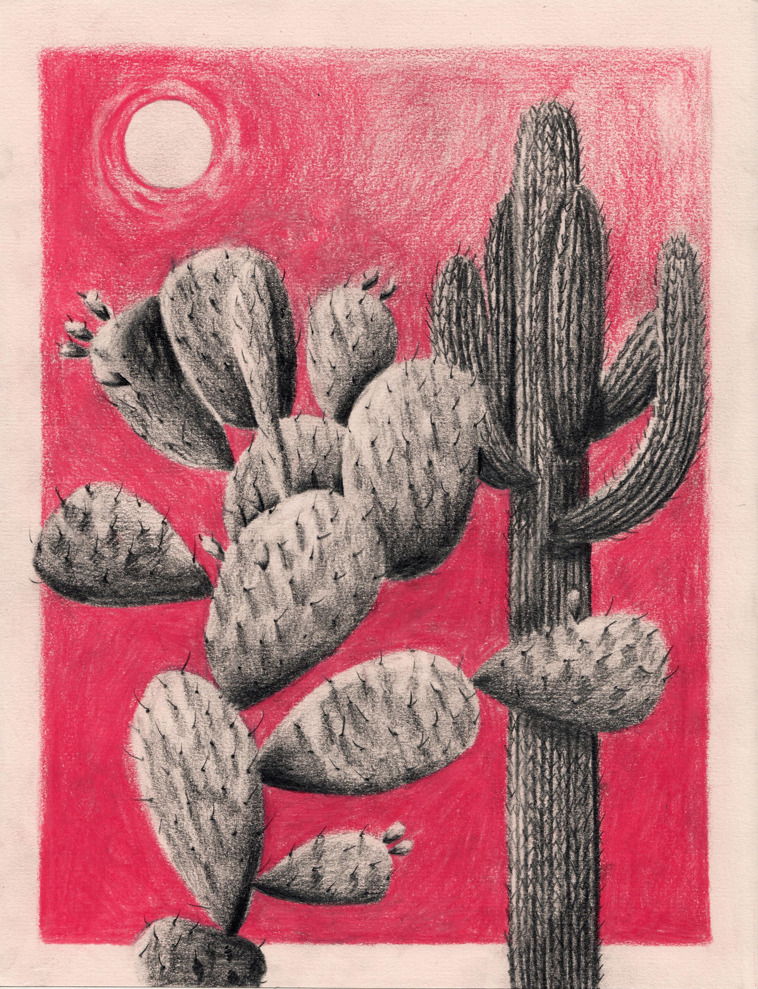 cacti commission.jpg