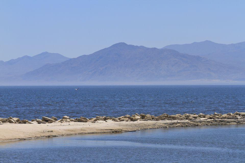 the-salton-sea-in-california-desert-175507810-58c0af4d3df78c353c171abf.jpg