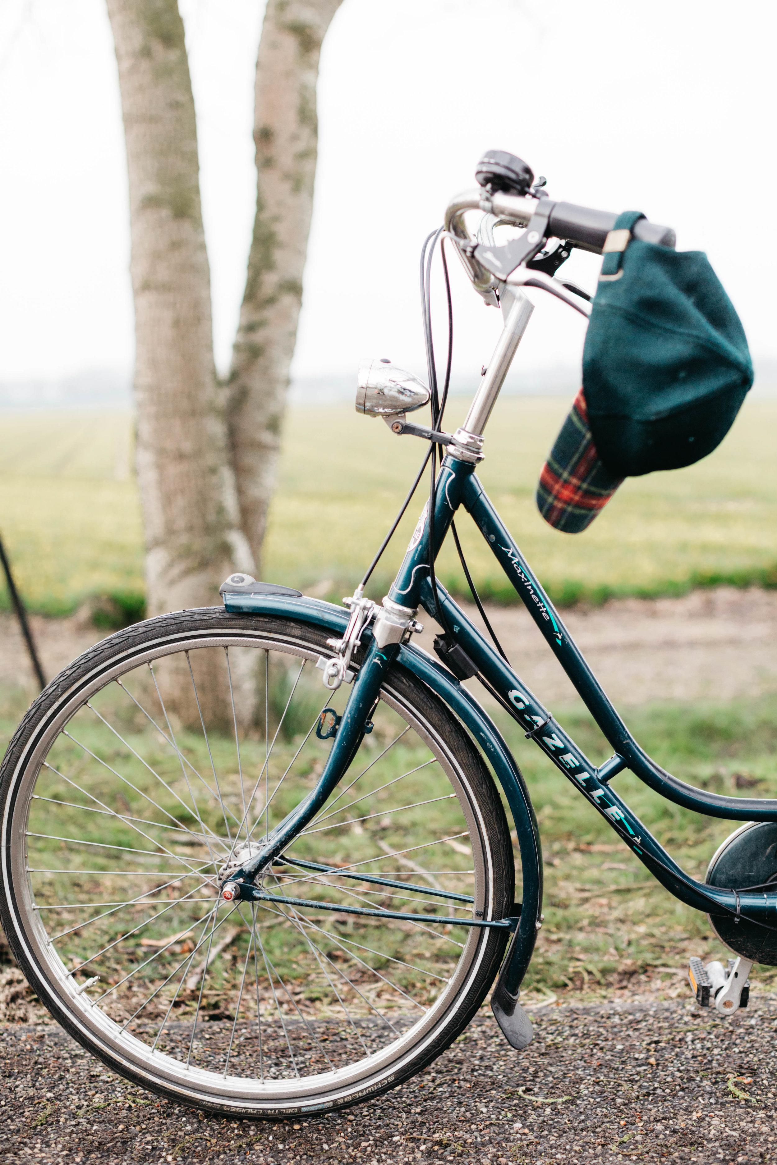 gazelle-frederic-rent-a-bike