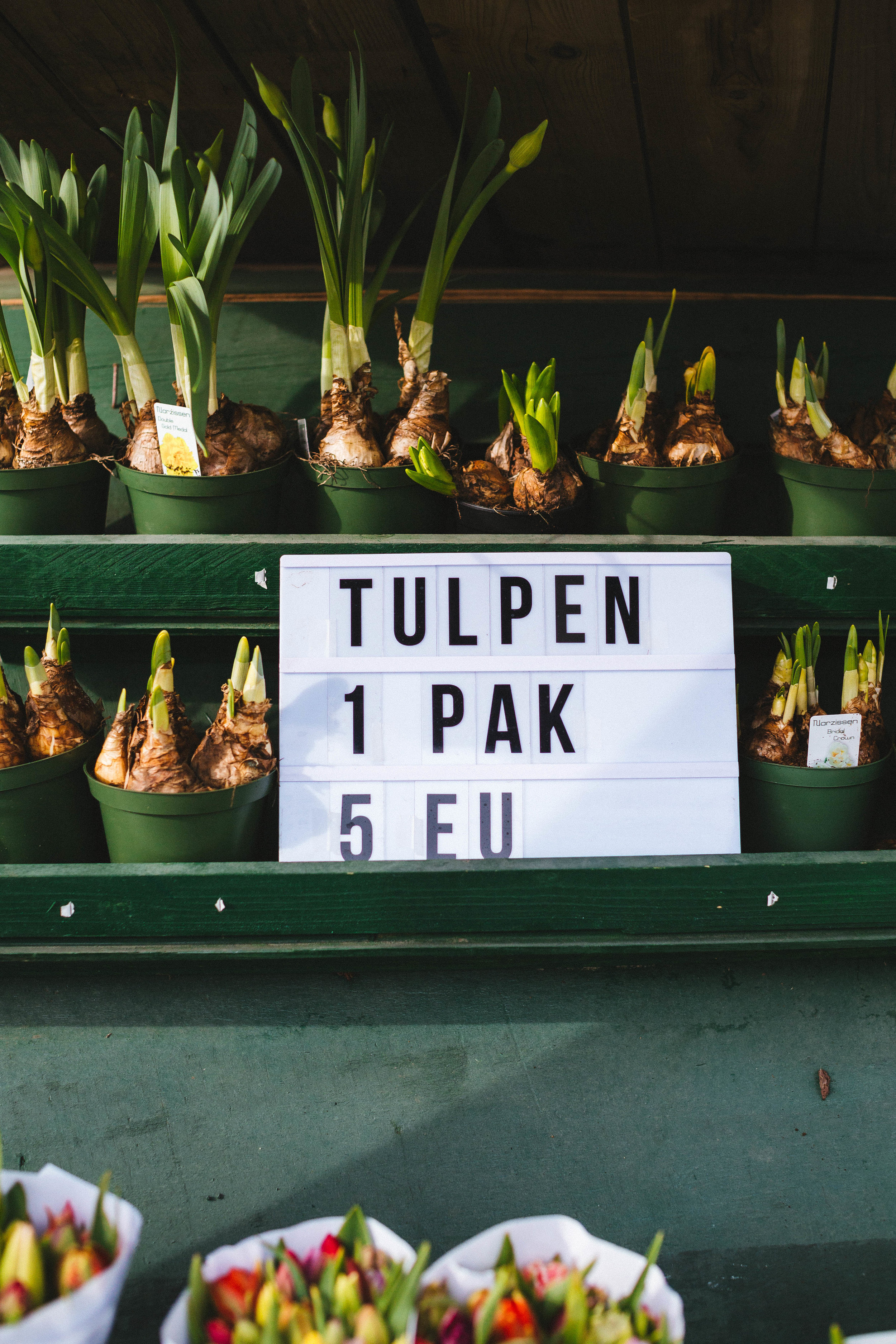 tulips-roadside-stand-hillegom.jpg