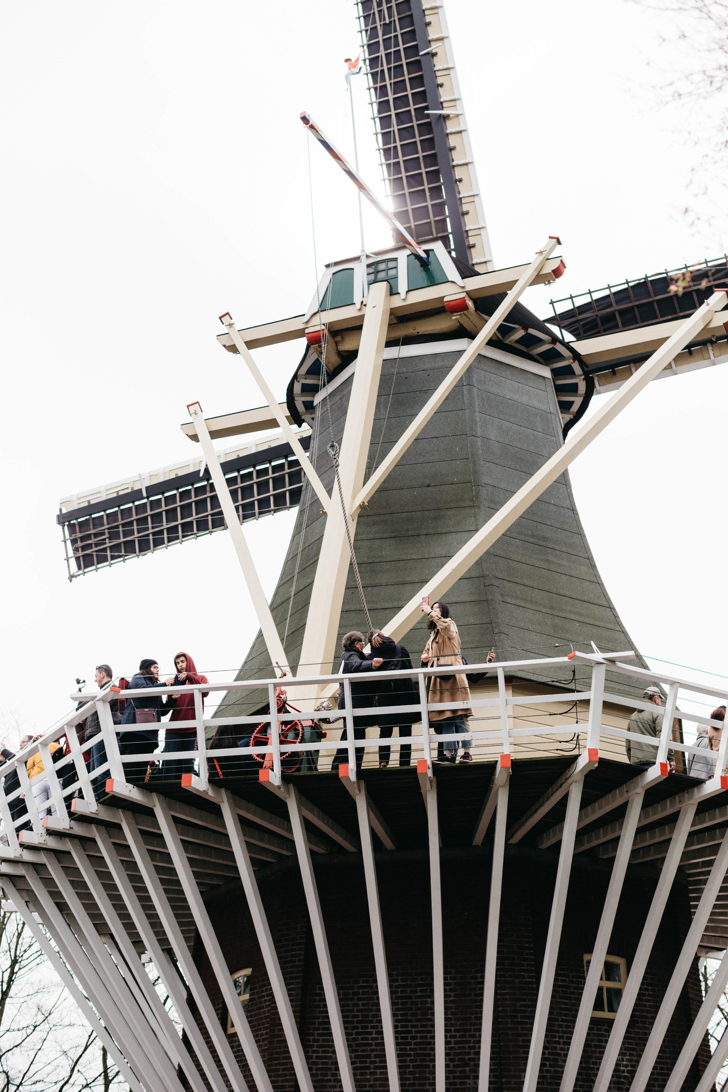windmill-keukenhof-selfie