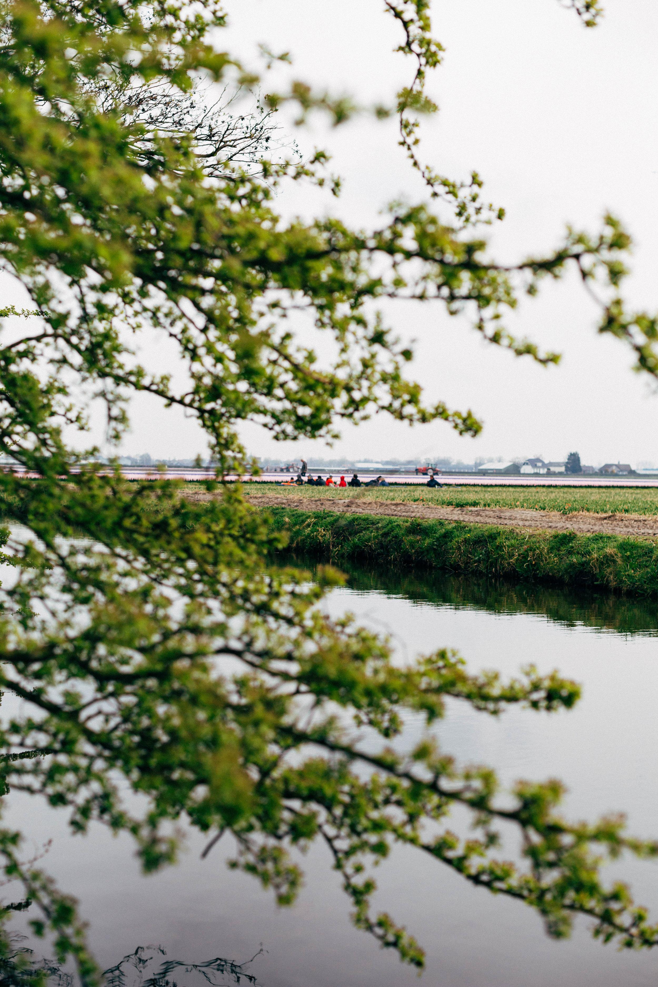 people-canal-boat-keukenhof-distance