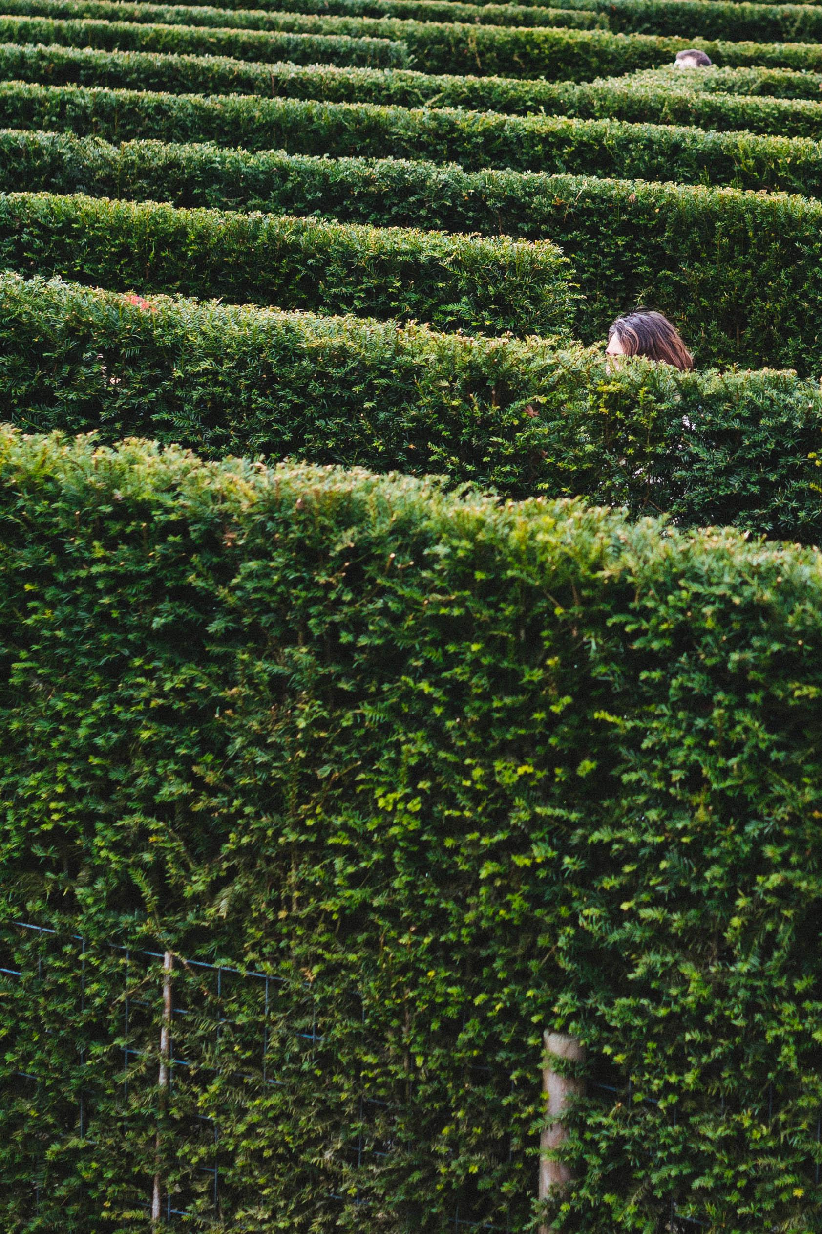 keukenhof-garden-maze