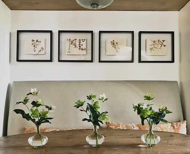 Simply from the garden🌿#emilyellisonstudio  #floraldesign #tabletop #eventdesign #Gardens #freshcuts